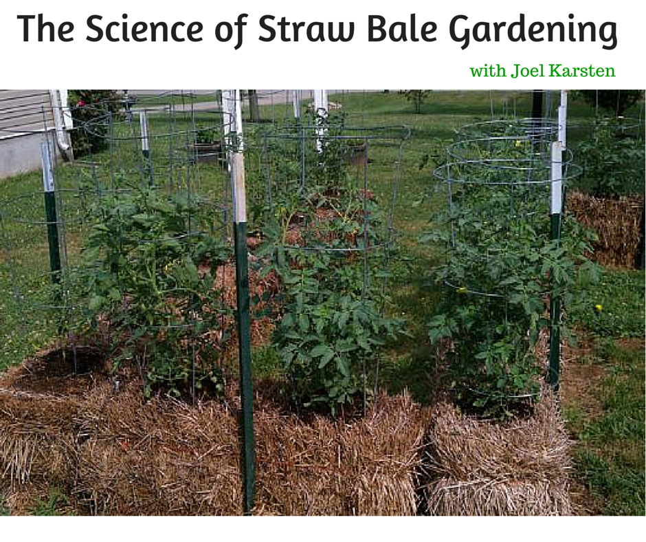 The Science Of Straw Bale Gardening With Joel Karsten Back To My Garden