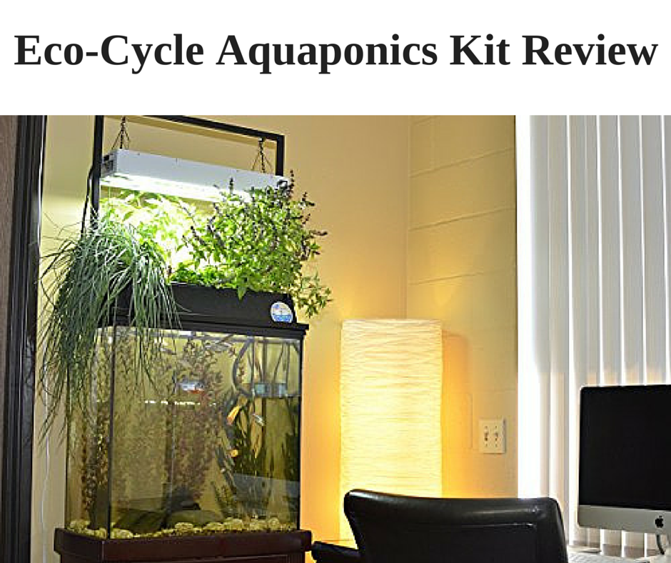 Backyard Aquaponics Kit :  kit the best choice for you contents 1 is the eco cycle aquaponics kit