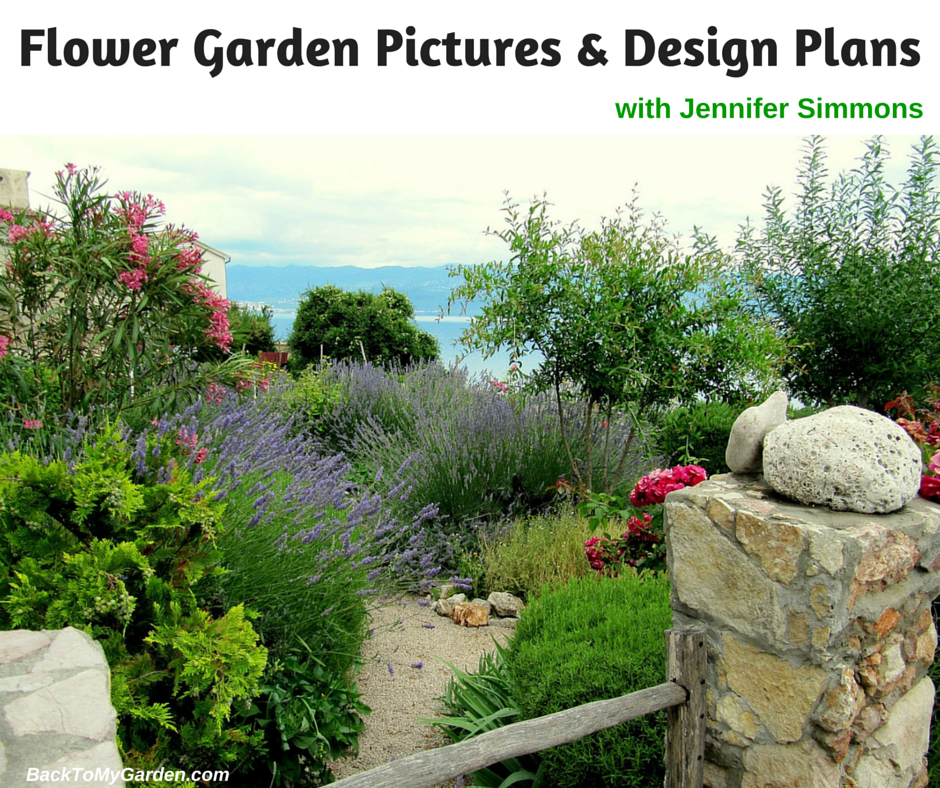 Flower garden pictures design plans with jennifer for Garden design podcast