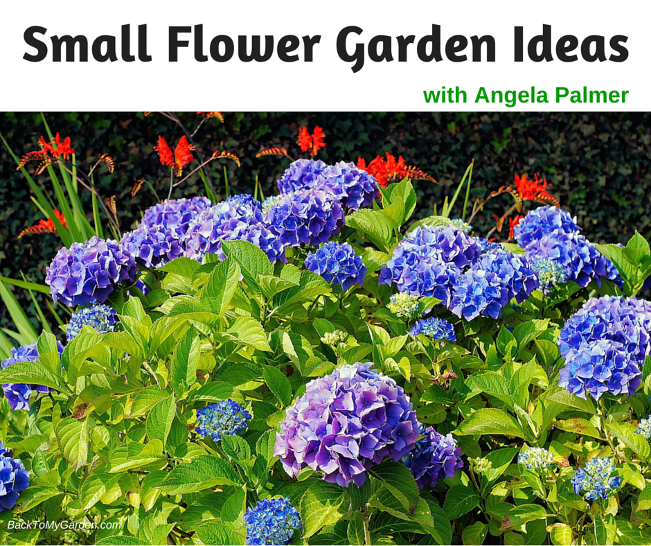 Small flower garden ideas with angela palmer back to my for Garden design podcast