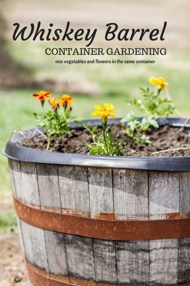 99 Remarkably Clever Gardening Tips Amp Shortcuts That You